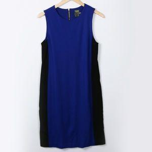 Taylor Royal Blue Shift Knee Length Dress Size 6
